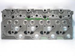 Cylinder head V2203-M-DI