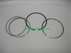 Assy piston ring