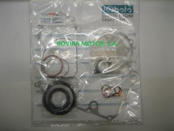 Kit gasket lower