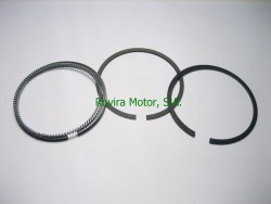 Ring piston Assy